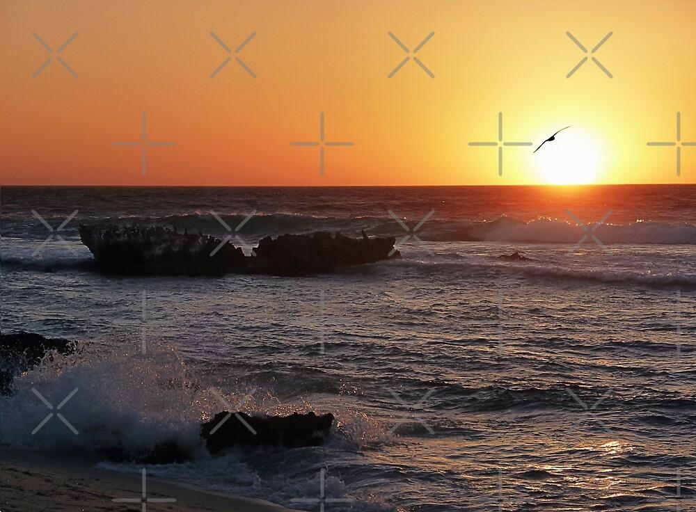 Trigg Beach at Sunset, Western Australia by haymelter