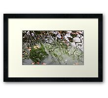 Green Water Framed Print