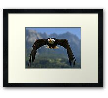 Nature's Air Force Framed Print