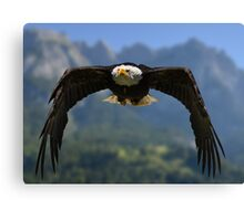 Nature's Air Force Canvas Print