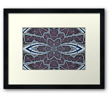 Extraordinary Web Framed Print