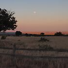 Sundown over New Mexico by seymourpics