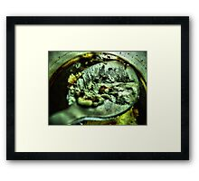 The spoon Framed Print