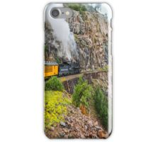 Mountain Top Train Ride iPhone Case/Skin
