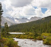 Indian Peaks Rainy Summer Day by Bo Insogna
