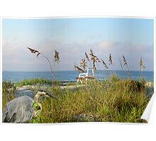 A beautiful Morning at the Beach Poster