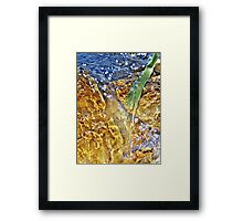 Fresh water Framed Print