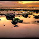 Redcar Beach at Low Tide by Darren Allen