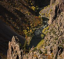 Black Canyon & Fall Colors by William C. Gladish