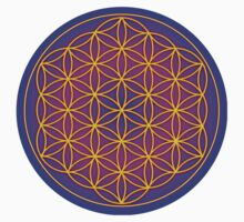 Flower of Life Sacred Geometry Kids Clothes