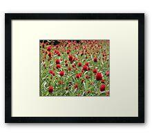 Sea of Fury Framed Print