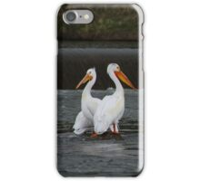 Well Perched iPhone Case/Skin