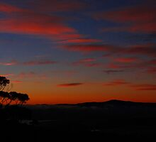 I wake to you each morning ..... by Alenka Co