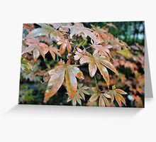 Russet dreams Greeting Card