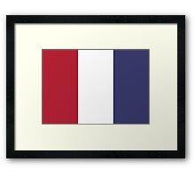U.S. Flag Framed Print