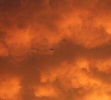 Fire in the Sky by Adam Kuehl