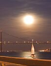 moonlight sailing by terezadelpilar ~ art & architecture