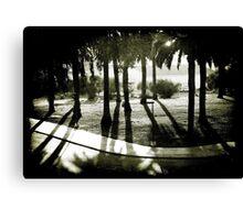 Palm Bosque at Dusk Canvas Print