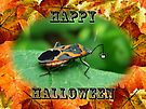 Halloween Greeting Card - Box Elder Bug by MotherNature