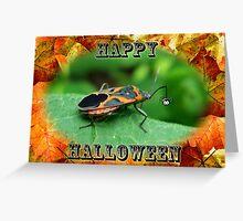 Halloween Greeting Card - Box Elder Bug Greeting Card