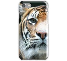 Wild Tigris iPhone Case/Skin