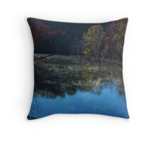 Nerang River early Morning II Throw Pillow