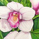 Dad's Orchid by Lynne Kells (earthangel)