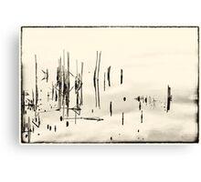 Beyond Stillness Canvas Print