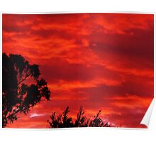 Qld Sunset Poster