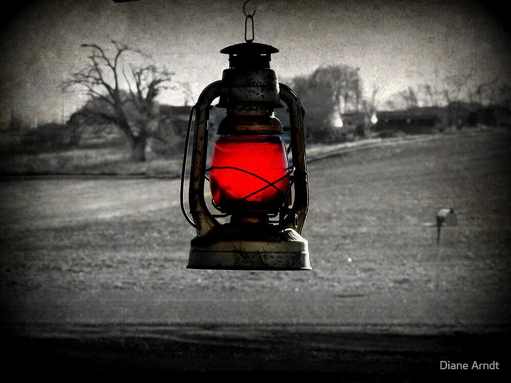 Crimson Lantern by Diane Arndt