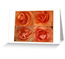 Apricots & Oranges Greeting Card
