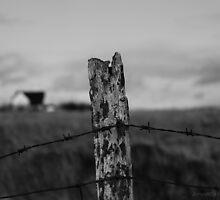 the fence by JorunnSjofn Gudlaugsdottir