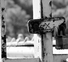 The Master Of All Locks by Nick Scott