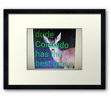 Dude, Colorado has the best grass Framed Print