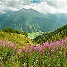 Stunning Switzerland by UniSoul