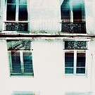 double double window by busteradams