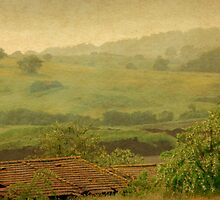 Misty Morn in Monterosi-Italy by Deborah Downes