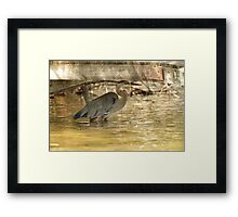 Bad Day Framed Print