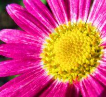 Garden flowers Sticker
