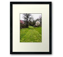 Backroad Framed Print