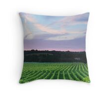 Denbies Vineyard, Dorking, Surrey Throw Pillow