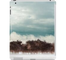 first snow iPad Case/Skin