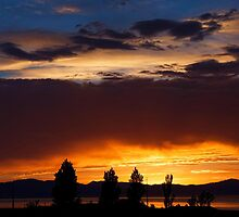 Colorful Sky by Nicole  Markmann Nelson