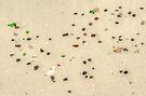 Beautiful Sea glass on the beach in Nassau, The Bahamas by 242Digital