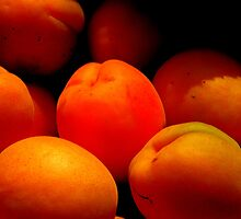 Apricots by Barnbk02