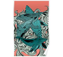 Whales Poster