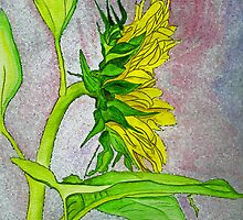 Sunflower Sunshine Side View 2012 by Anne Gitto