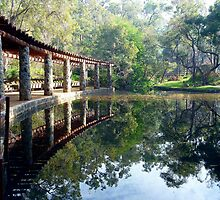 Araluen Pool Reflections by Michelle Cocking