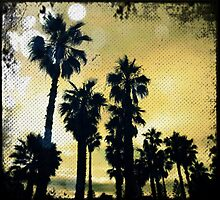 Palms I by geophotographic