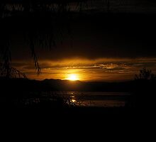 Sonnenuntergang by Nicole  Markmann Nelson